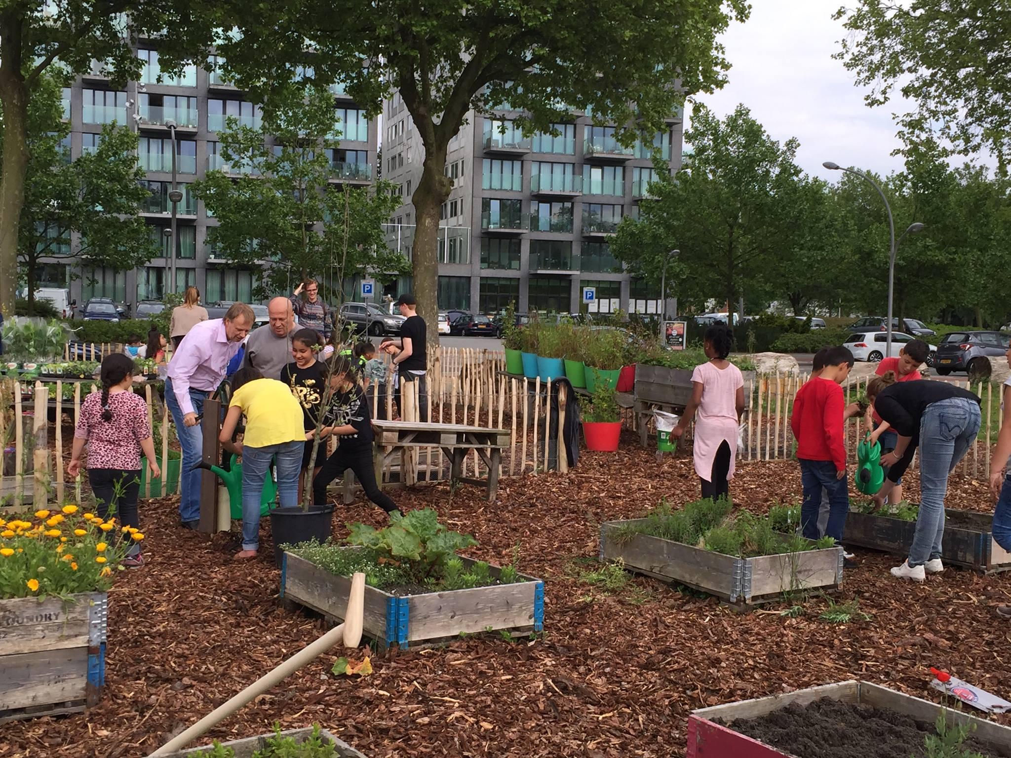 Kick of tuinenproject Stadgenoot en Stadsdeel aan de Colijnstraat in Geuzenveld met Ontkiem West en Stichting VOORUIT!